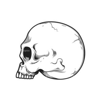 Skull Vector Clipart 10-1 Clip Art - SVG & PNG vector