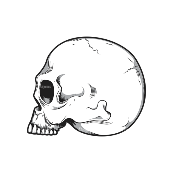Skull Vector Clipart 10-1 skulls pack 10 1 preview