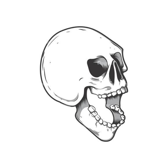 Skull Vector Clipart 10-3 Clip Art - SVG & PNG vector