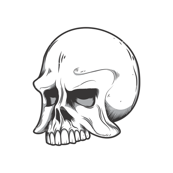 Skull Vector Clipart 10-4 skulls pack 10 4 preview
