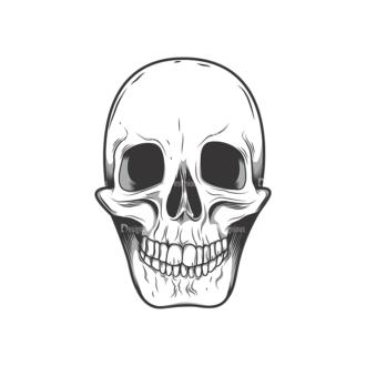 Skull Vector Clipart 10-5 Clip Art - SVG & PNG vector