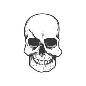 Skull Vector Clipart 11-1 Clip Art - SVG & PNG vector