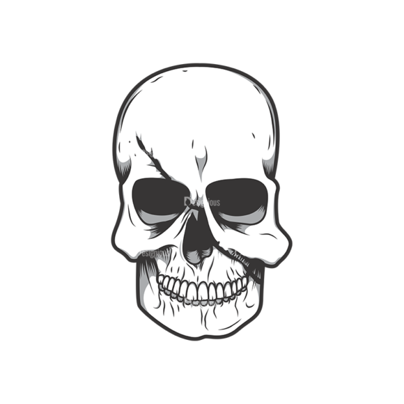 Skull Vector Clipart 11-1 skulls pack 11 1 preview