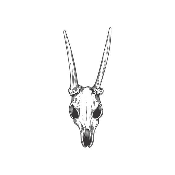 Skull Vector Clipart 12-10 skulls pack 12 10 preview