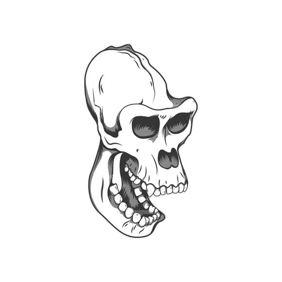 Skull Vector Clipart 12-11 Clip Art - SVG & PNG vector