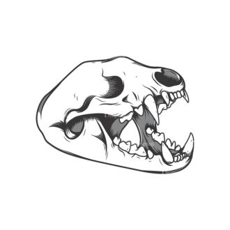 Skull Vector Clipart 12-4 Clip Art - SVG & PNG vector