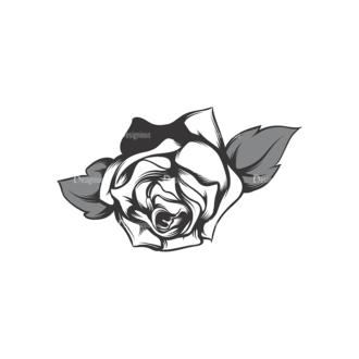 Skull Vector Clipart 17-24 Clip Art - SVG & PNG vector