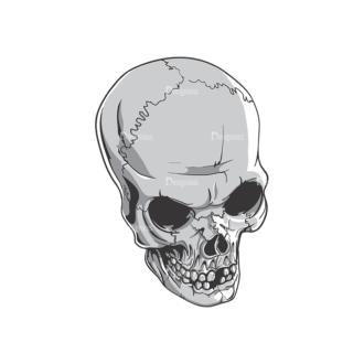 Skull Vector Clipart 19-10 Clip Art - SVG & PNG vector