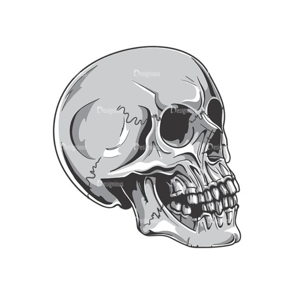 Skull Vector Clipart 19-2 skulls pack 19 2 preview