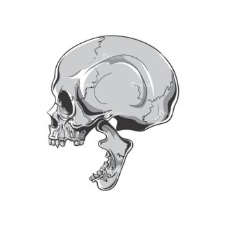 Skull Vector Clipart 19-5 Clip Art - SVG & PNG vector
