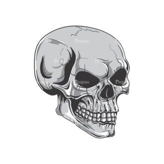 Skull Vector Clipart 19-7 Clip Art - SVG & PNG vector