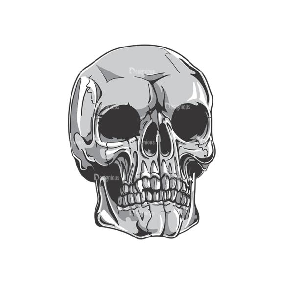Skull Vector Clipart 19-8 Clip Art - SVG & PNG vector