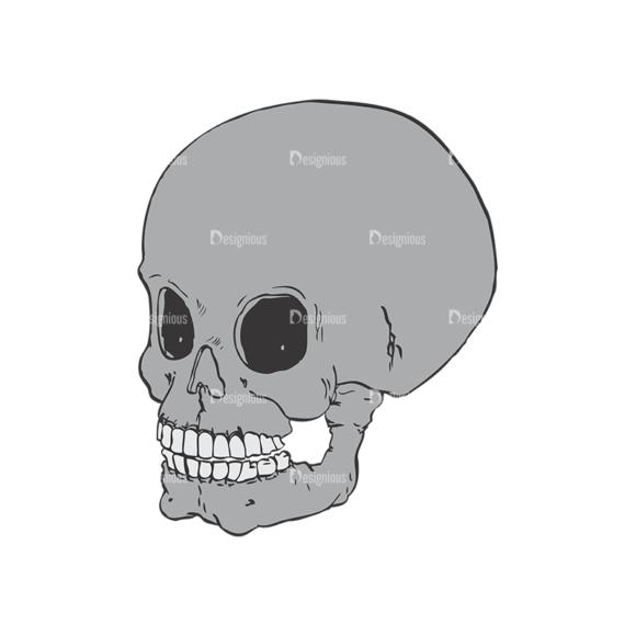 Skull Vector Clipart 2-3 skulls pack 2 3 preview