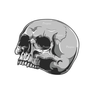 Skull Vector Clipart 20-3 Clip Art - SVG & PNG vector