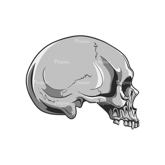 Skull Vector Clipart 20-4 Clip Art - SVG & PNG vector