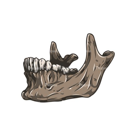 Skull Vector Clipart 28-4 skulls pack 28 4 preview