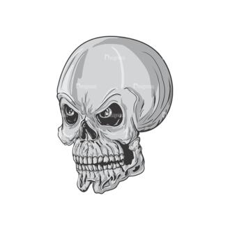 Skull Vector Clipart 3-11 Clip Art - SVG & PNG vector