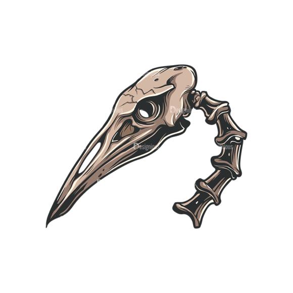 Skull Vector Clipart 33-5 Clip Art - SVG & PNG vector