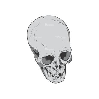Skull Vector Clipart 6-10 Clip Art - SVG & PNG vector