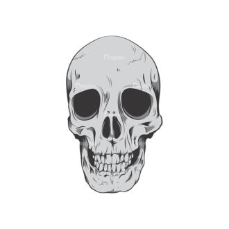 Skull Vector Clipart 6-9 Clip Art - SVG & PNG vector